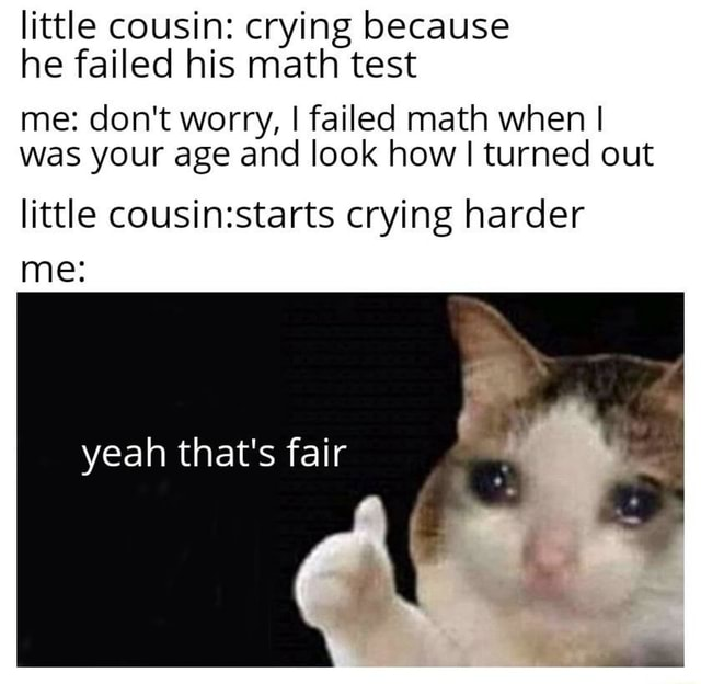 Little cousin crying because he failed his math test me do not worry, I failed math when I was your age and look how I turned out little crying harder me yeah that's fair meme