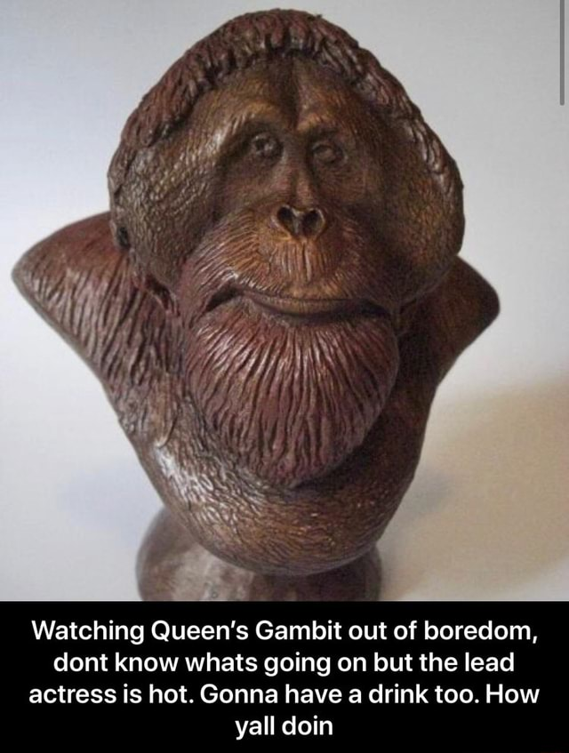 Watching Queen's Gambit out of boredom, dont know whats going on but the lead actress is hot. Gonna have a drink too. How yall doin  Watching Queen's Gambit out of boredom, dont know whats going on but the lead actress is hot. Gonna have a drink too. How yall doin memes