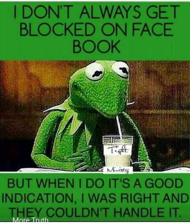 I DONT ALWAYS GET BLOCKED ON FACE BOOK BUT WHEN DO IT's A GOOD INDICATION, I WAS RIGHT AND THEY COULDN'T HANDLE IT memes