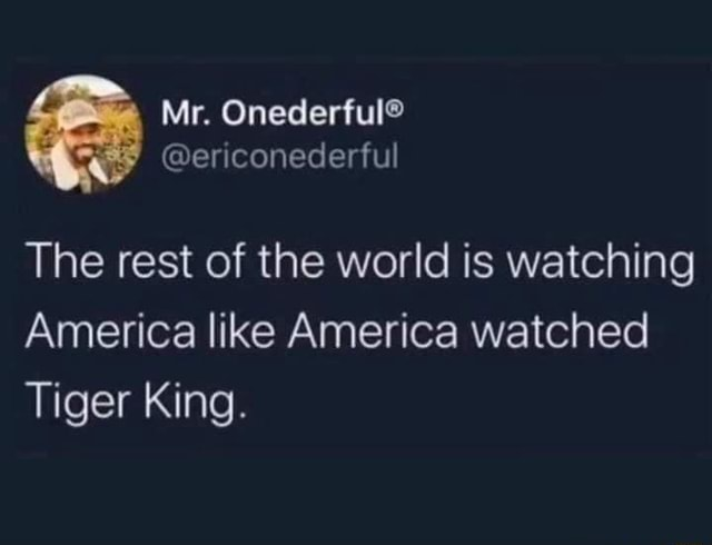 Mr. ericonederful The rest of the world is watching America like America watched Tiger King meme