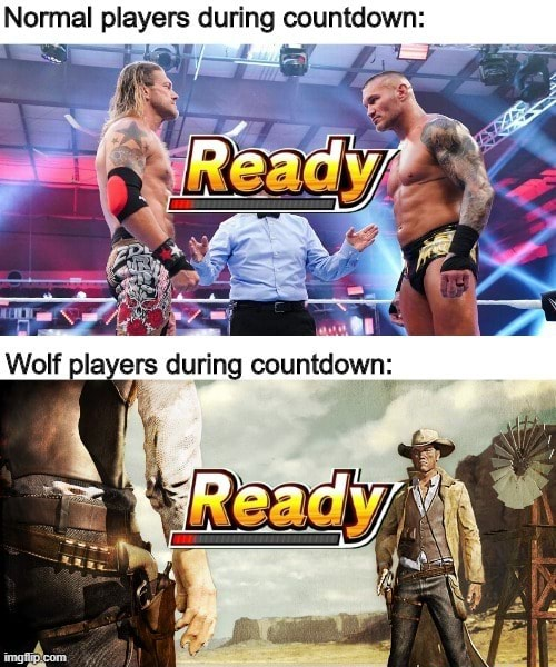 Normal players during countdown Wolf players during countdown meme