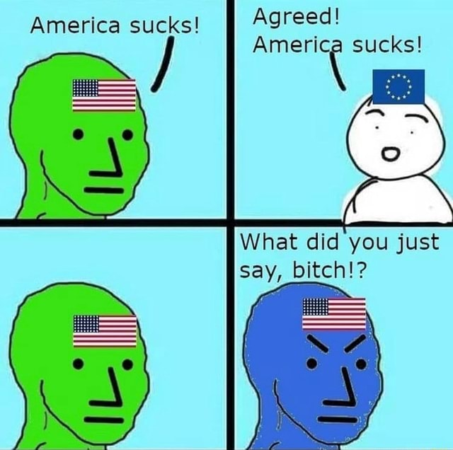 Agreed sucks America sucks What did you just say, bitch memes