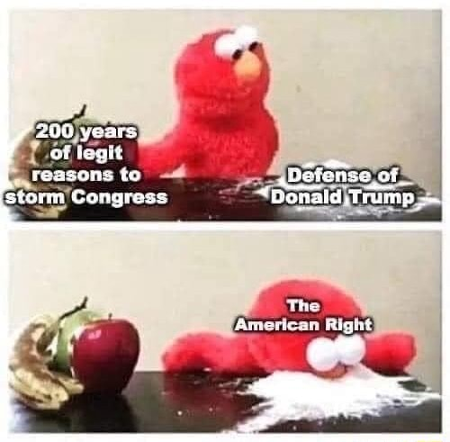 Of legit reasons to storm Congress meme
