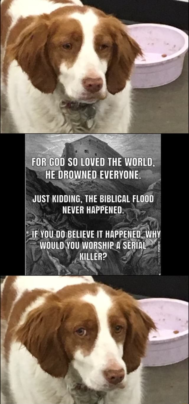 FOR GOD SO LOVED THE WORLD, HE DROWNED EVERYONE. JUST KIDDING. THE BIBLICAL FLOOD NEVER HAPPENED. IF YOU DO BELIEVE IT HAPPENED, WHY WOULD YOU WORSHIP SERIAL KILLER memes
