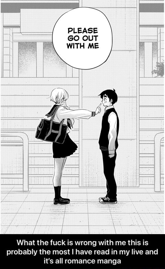 PLEASE GO OUT WITH ME What the fuck is wrong with me this is probably the most I have read in my live and it's all romance manga  What the fuck is wrong with me this is probably the most I have read in my live and it's all romance manga memes