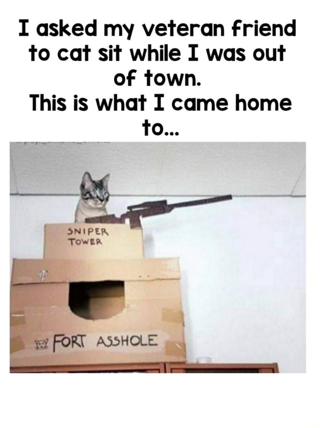 I asked my veteran friend to cat sit while I was out of town. This is what I came home To SNIPER ASSHOLE memes