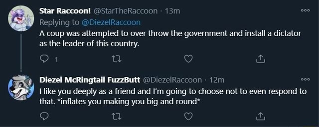 Star Raccoon StarTheRaccoon Replying to DiezelRaccoon A coup was attempted to over throw the government and install a dictator as the leader of this country. 9, Diezel McRingtail FuzzButt DiezelRaccoon like you deeply as a friend and I'm going to choose not to even respond to that. *inflates you making you big and round* meme