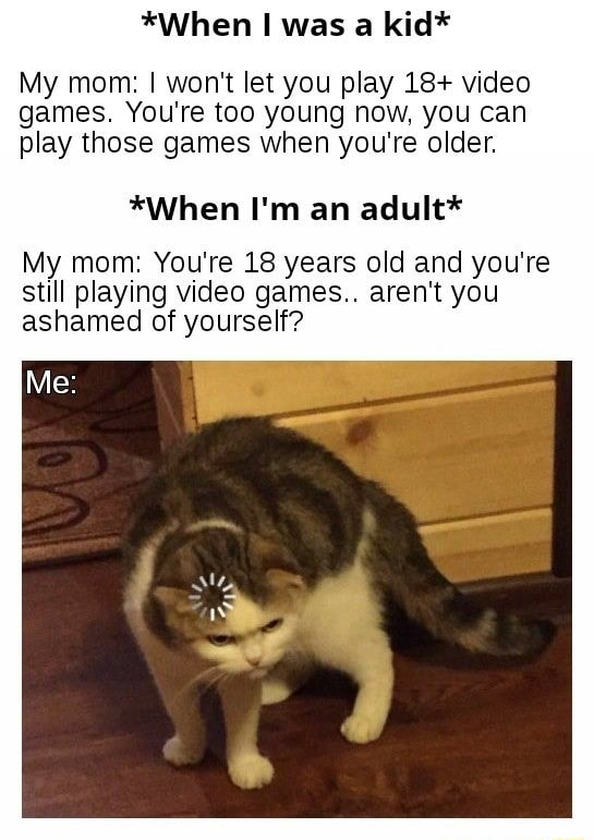 *When was a kid* My mom I won't let you play 18  games. You're too young now, you can play those games when you're older. *When I'm an adult* My mom You're 18 years old and you're still playing games aren't you ashamed of yourself memes