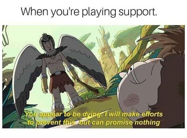 When you're playing support. e dying 7 will make efforts an promise nothing meme
