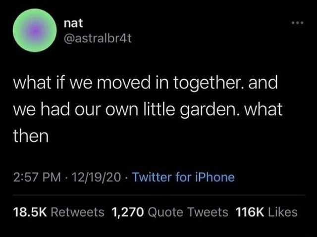 Nat what if we moved in together. and we had our own little garden. what then PM   Twitter for iPhone 18.5K Retweeits 1,270 Quote Tweets 116K Likes memes