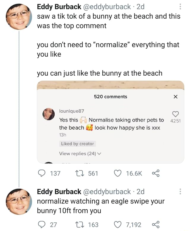Saw a tik tok of a bunny at the beach and this Eddy Burback eddyburback was the top comment you do not need to normalize everything that you like you can just like the bunny at the beach 520 comments lounique87 Yes this Normalise taking other pets to 4251 the beach look how happy she is xxx 134 Liked by creator View replies 24 v 137 16.6% Eddy Burback eddyburback  normalize watching an eagle swipe your bunny 10ft from you 7,192 27 memes