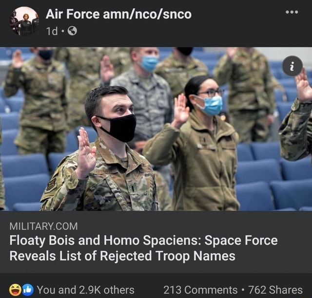 Air Force Floaty Bois and Homo Spaciens Space Force Reveals List of Rejected Troop Names You and 2.9K others 213 Comments 762 Shares memes