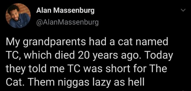 Alan Massenburg AlanMassenburg My grandparents had a cat named TC, which died 20 years ago. Today they told me TC was short for The Cat. Them niggas lazy as hell memes