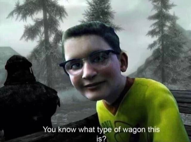 Le You know what type of wagon this is memes