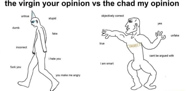 The virgin your opinion vs the chad my opinion untrue stupid objectively correct fake fake unfake incorrect cant be argued with ihate you iam smart fuck you you make me angry memes