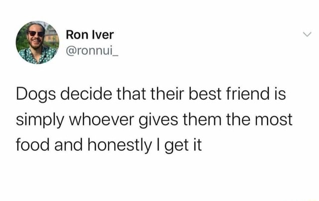 Ron Iver ronnul Dogs decide that their best friend is simply whoever gives them the most food and honestly I get it memes