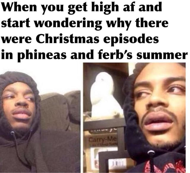 When you get high af and start wondering why there were Christmas episodes in phineas and ferb's summer memes