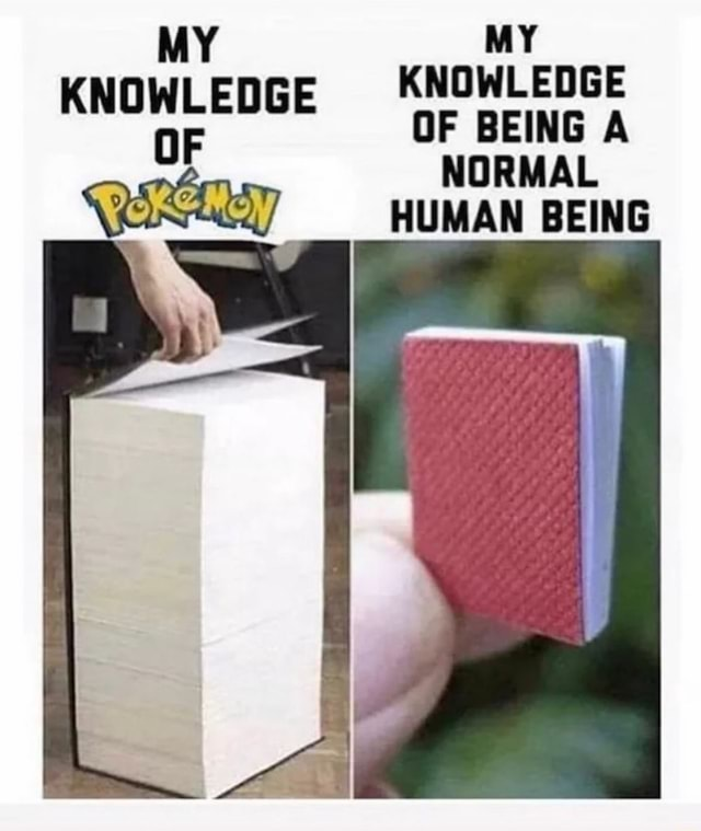 MY MY KNOWLEDGE OF BEING A NORMAL HUMAN BEING memes
