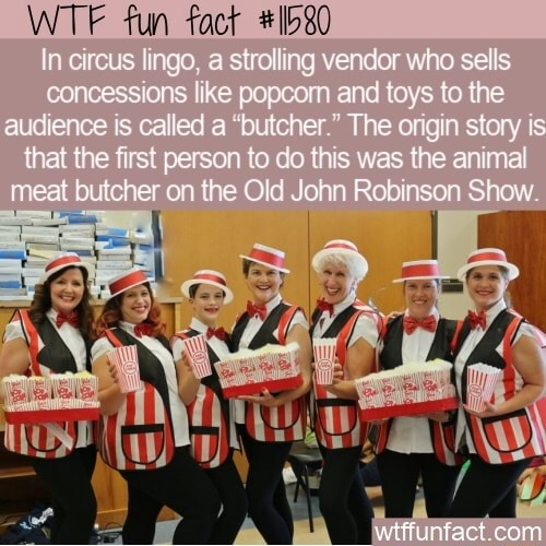 WTF fun In circus lingo a stroling vendor who sells concessions like popoom end toys to the audience is called a butcher The origin story that the first person to do this was the animal meat butcher on the Old John Robinson Show wtffunfact com memes