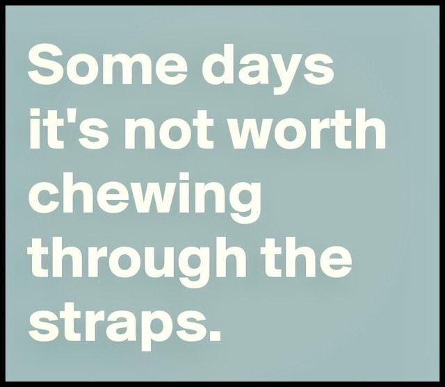 Some days it's not worth chewing through the straps meme