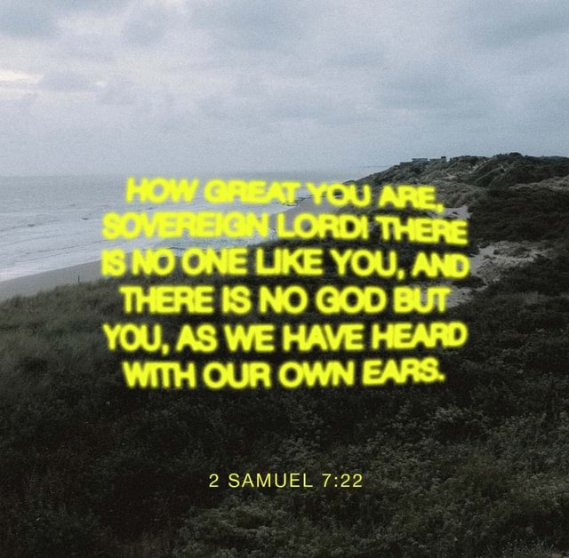 THERE IS NO GOD YOU, AS WE HAVE HEARD WITH OUR OWN EARS. 2 SAMUEL memes