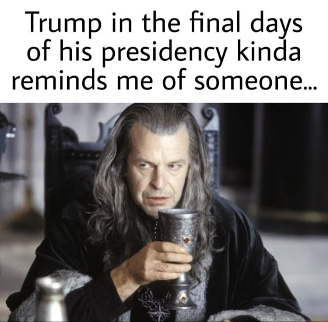 Trump in the final days of his presidency kinda reminds me of someone memes