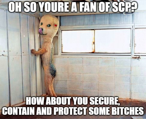 OH SO YOURE A FAN OF HOW ABOUT YOU SECURE, PONTAIN ANN DRNTEPT COME BITCHES memes