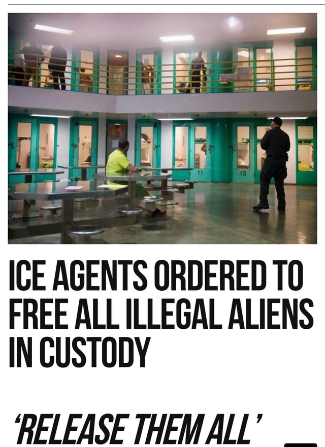 ICE AGENTS ORDERED FREE ALL ILLEGAL ALIENS IN CUSTODY RELEASE THEMALL meme