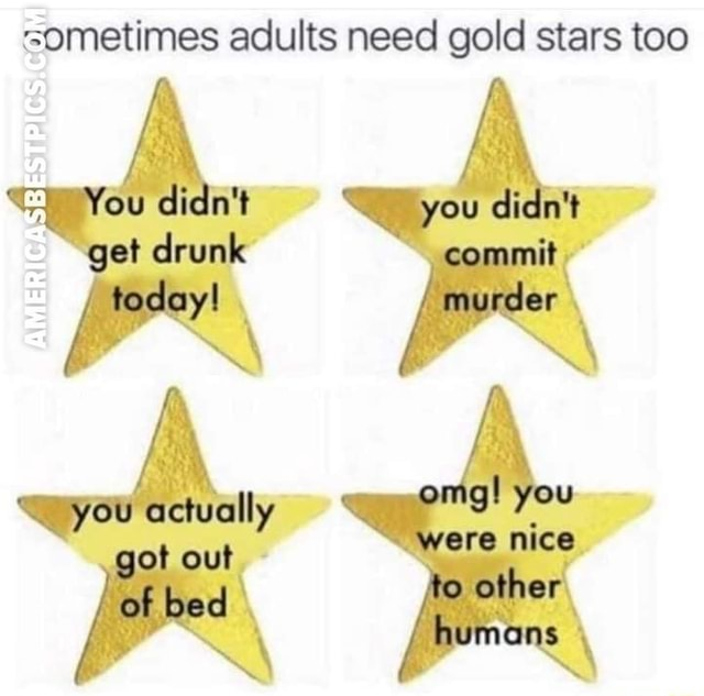 Get today you aciually out bed sometimes adults need gold stars too you murder omg you were other humans memes