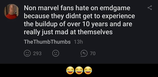 Non marvel fans hate on emdgame because they didnt get to experience the buildup of over 10 years and are really just mad at themselves TheThumbThumbs 293 70   meme