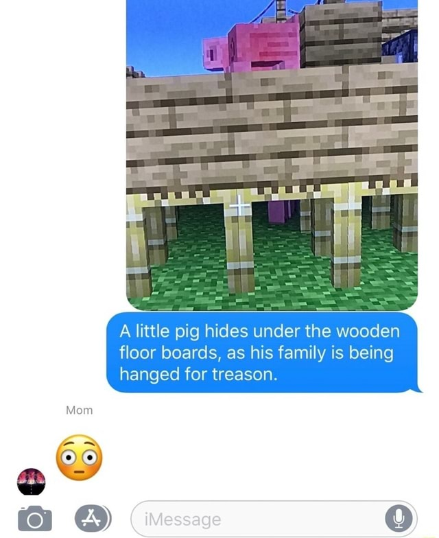 Mom A little pig hides under the wooden floor boards, as his family is being hanged for treason memes