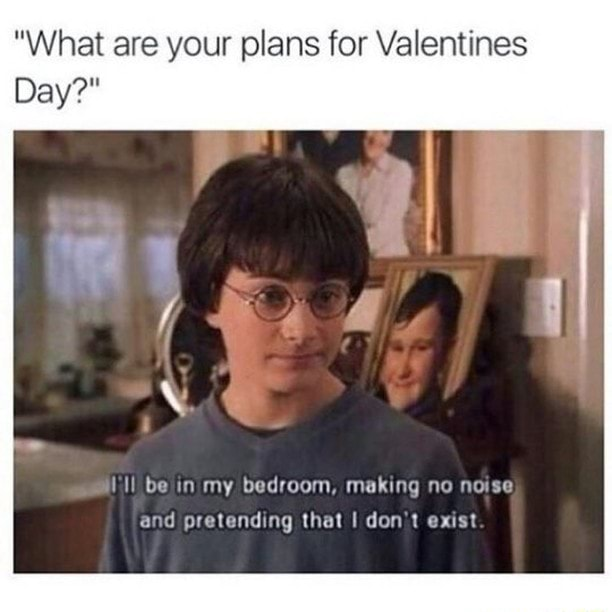 What are your plans for Valentines Day  Key be in my bedroom, making no noise and pretending that I do not exist memes