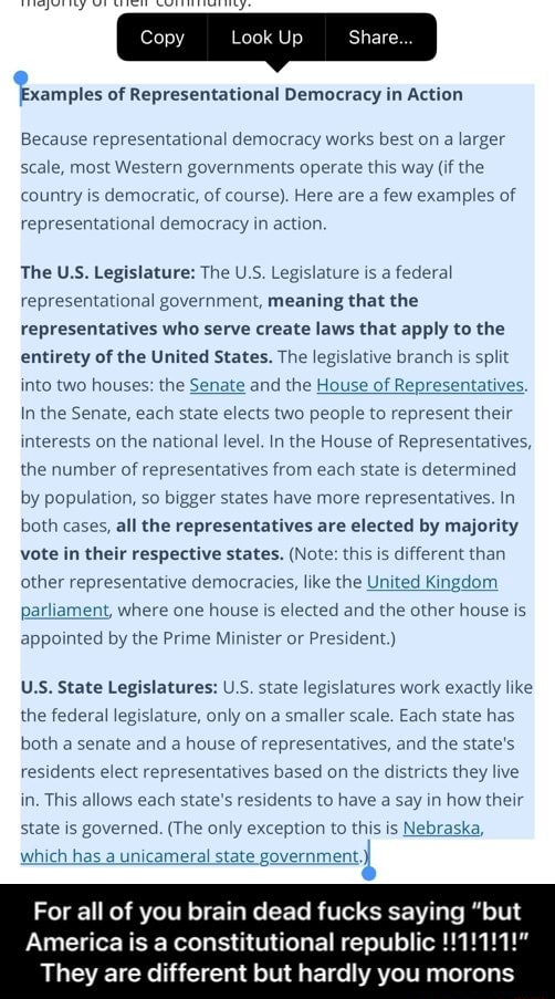 Look Up Examples of Representational Democracy in Action Because representational democracy works best on a larger scale, most Western governments operate this way if the country is democratic, of course. Here are a few examples of representational democracy in action. The US Legislature The US. Legislature is a federal representational government, meaning that the representatives who serve create laws that apply to the entirety of the United States. The legislative branch is split into two houses the Senate and the House of Representatives. In the Senate, each state elects two people to represent their interests on the national level. In the House of Representatives, the number of representatives from each state is determined by population, so bigger states have more representatives. In