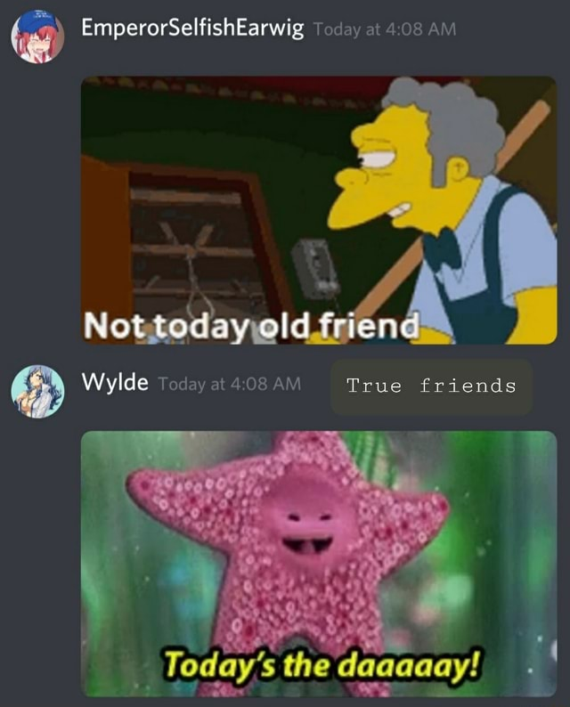 EmperorSelfishEarwig Today at AM Not today Wylde Today at AM True friends the daaaaay memes