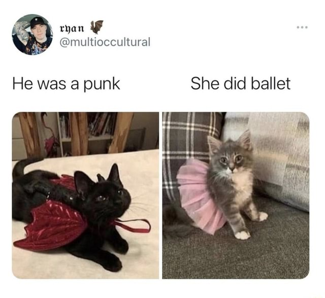 Ryan He was a punk She did ballet memes