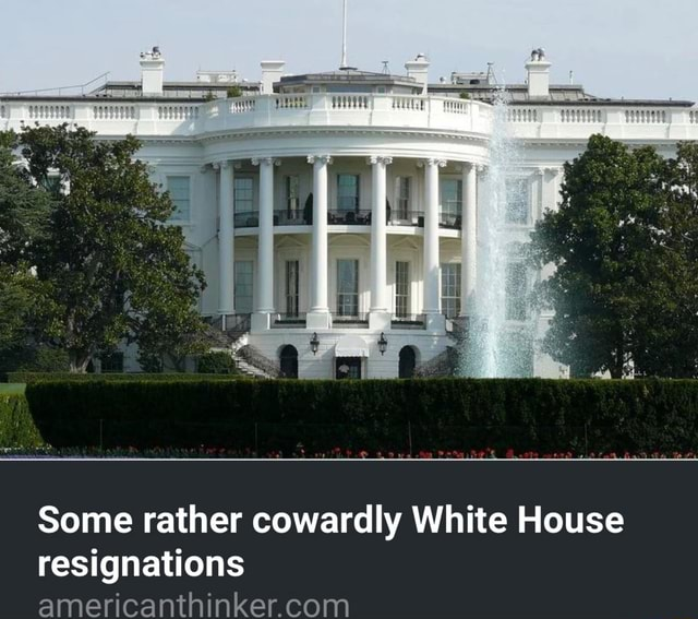 Some rather cowardly White House resignations meme