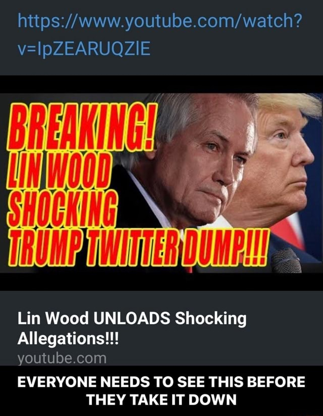 VelpZEARUQZIE ff Lin Wood UNLOADS Shocking Allegations youtu be.co EVERYONE NEEDS TO SEE THIS BEFORE THEY TAKE IT DOWN EVERYONE NEEDS TO SEE THIS BEFORE THEY TAKE IT DOWN meme