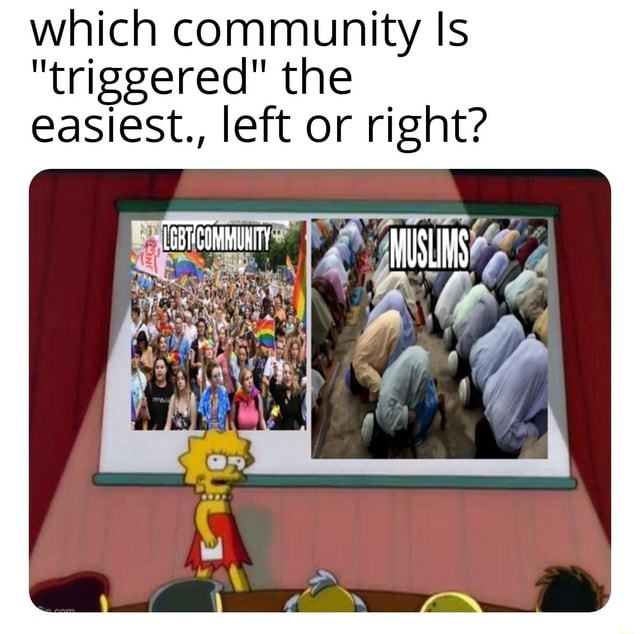 Which community Is triggered the easiest., left or right MUSLIMS memes