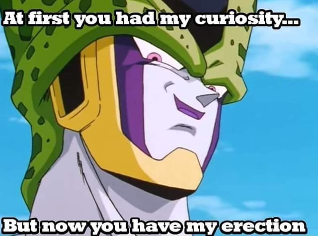 At first you had my curiosity But now you haveimy erection meme