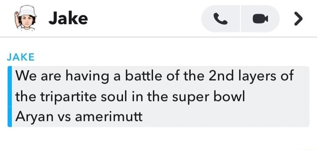 Jake JAKE We are having a battle of the layers of the tripartite soul in the super bowl Aryan vs amerimutt meme