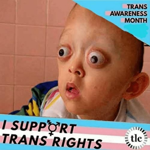 TRANS AWARENESS MONTH fA SUP, TRANS RIGHTs memes