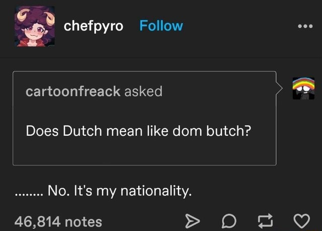 Chefpyro Follow cartoonfreack asked Does Dutch mean like dom butch No. It's my nationality. 46,814 notes OO memes