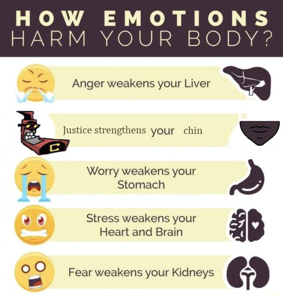 EMOTIONS HARM YOUR BODY Anger weakens your Liver Justice strengthens your chin Worry weakens your Stomach ee Stress weakens your Heart and Brain Fear weakens your Kidneys memes