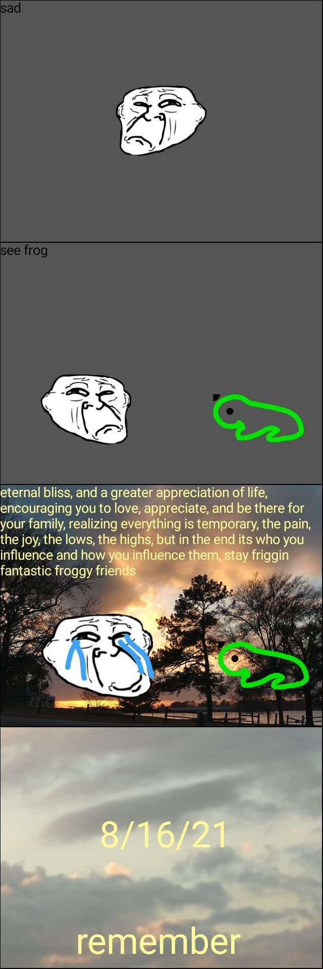 Sad eternal bliss, and a greater appreciation of life, encouraging you to love, ap preciate, and be there for your family, realizing everything is temporary, the pain, the joy, the lows, the highs, but in the end its who you influence and how you influence them slay friggin fantastic froggy friend 3 remember memes