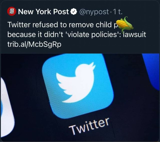 New York Post  nypost t. Twitter refused to remove child pp because it didn't violate policies' lawsuit meme