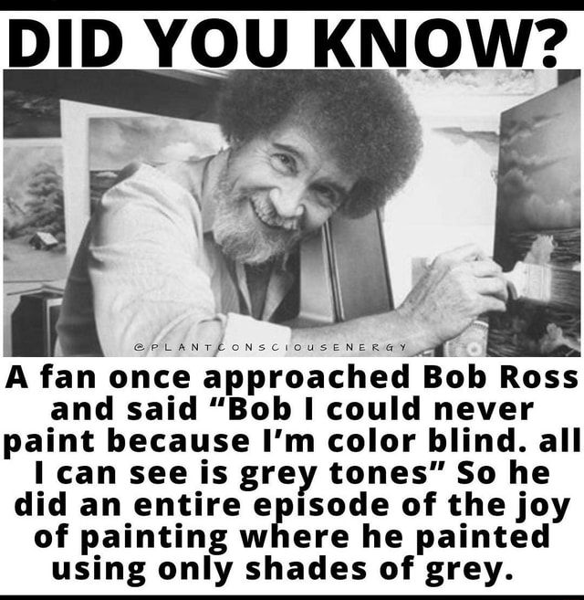 A fan once approached Bob Ross and said Bob could never paint because I'm color blind. all can see is grey tones So he did an entire episode of the joy of painting where he painted using only shades of grey memes