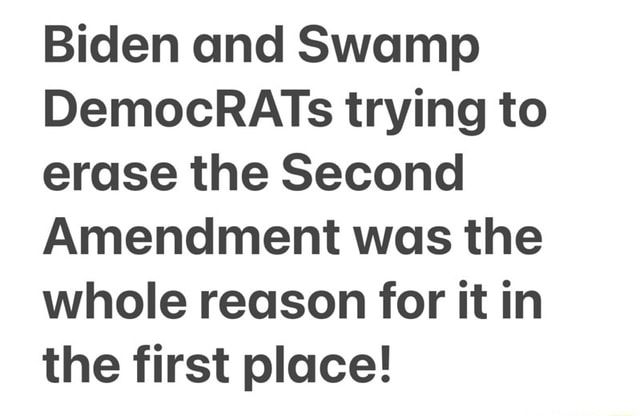 Biden and Swamp DemocRATs trying to erase the Second Amendment was the whole reason for it in the first place meme