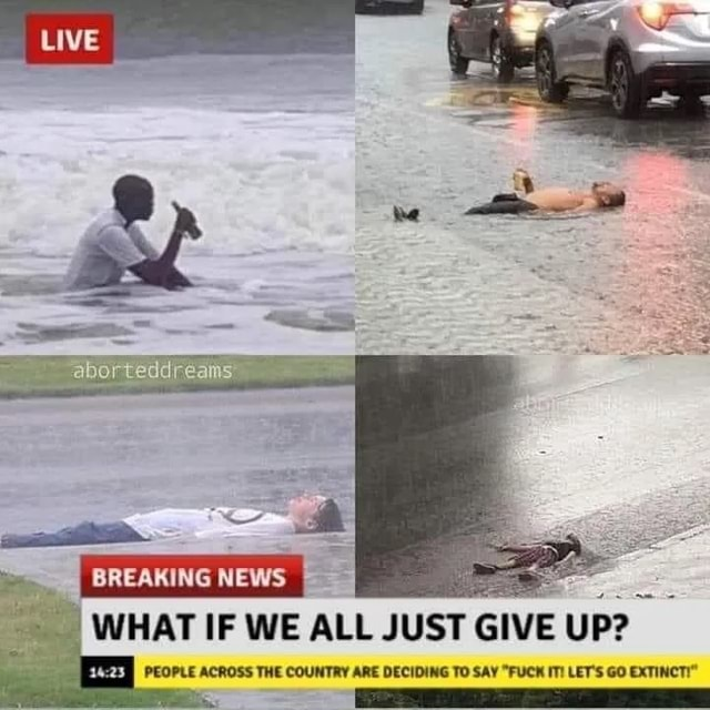 Te BREAMING NEWS WHAT IF WE ALL JUST GIVE UP PEOPLE ACROSS THE COUNTRY ARE DECIDING TO SAY FUCK IT LET'S GO EXTINCTI meme