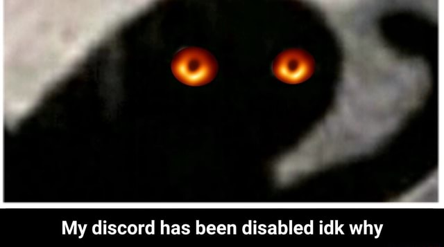 My discord has been disabled idk why  My discord has been disabled idk why meme