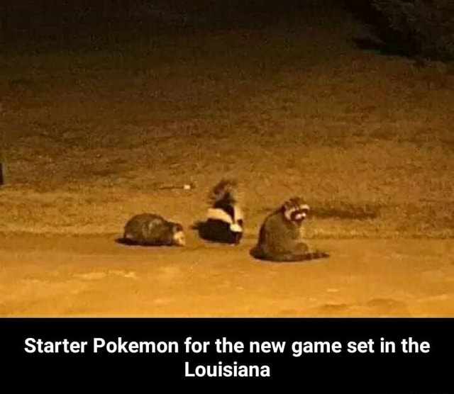 Starter Pokemon for the new game set in the Louisiana  Starter Pokemon for the new game set in the Louisiana meme